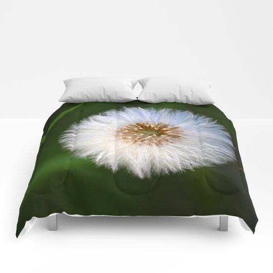 Softness Dandelion  Comforters