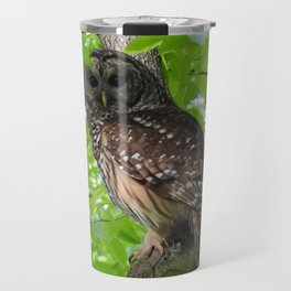 Barred Owl Encounter Travel Mug