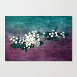 GARDEN TREASURY Canvas Print
