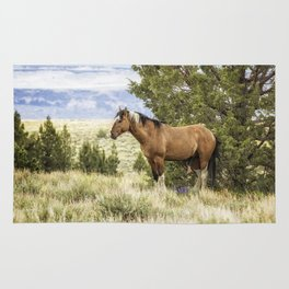 Stallion Relaxing on So Steens Mountain Rug