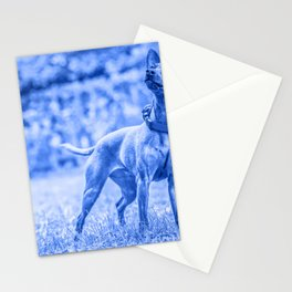 Outdoor portrait of a red miniature pinscher dog. Blue toned. Stationery Cards