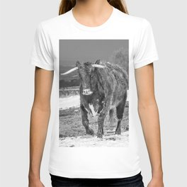 English Longhorn Black And White T-shirt