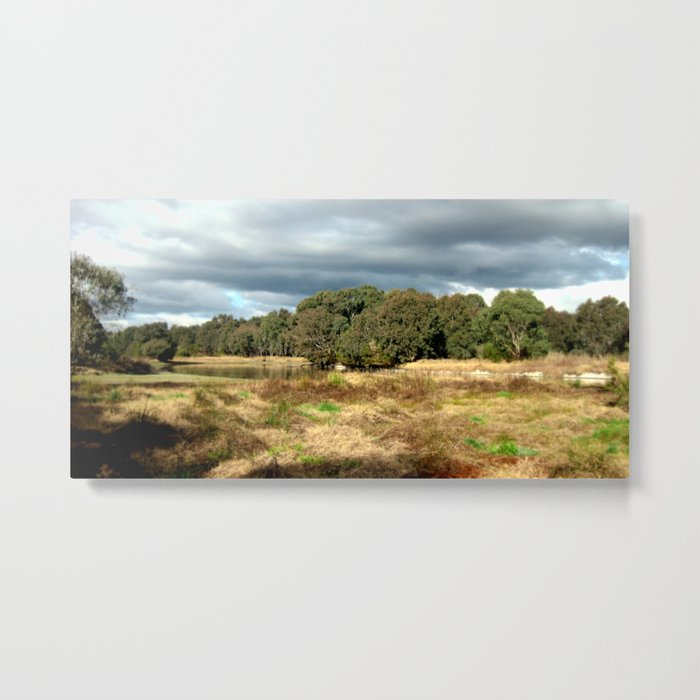 Swamp - Heritage Trail Metal Print