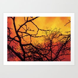 Branches in the Fire Art Print