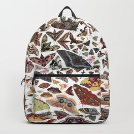 Moths of North America Pattern Backpack