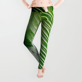 Big Leaves - Tropical Nature Photography Leggings