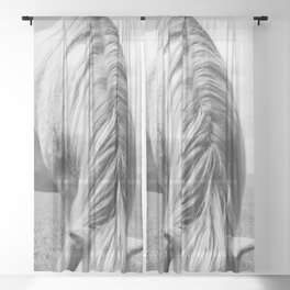 Horse Photography | Horse Mane Sheer Curtain