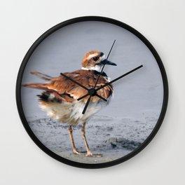 Juvenile Killdeer Wall Clock