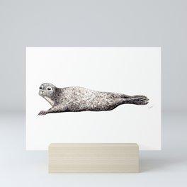 Harbour Seal Mini Art Print