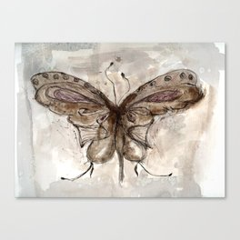 Fly like a Butterfly Canvas Print