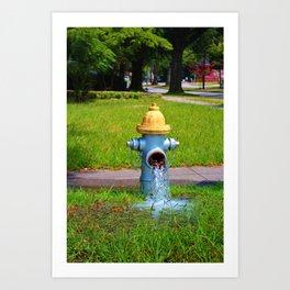 Fire Hydrant Gushing Water Art Print