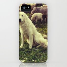 Herding dog, female, south of Israel, scaned sx-70 Polaroid iPhone Case