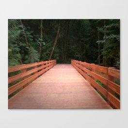 Red Cedar Hiking Bridge Canvas Print