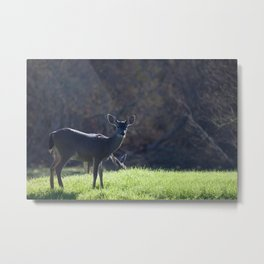 With Great Stealth Metal Print
