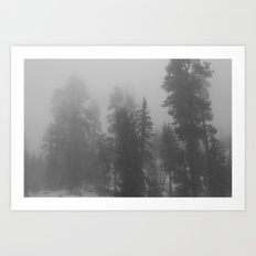 Misty Trees 2 Art Print