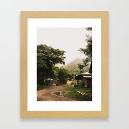elephant nature park 5 Framed Art Print