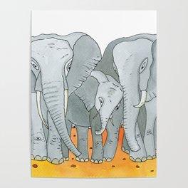 Noah's Ark - Elephant Poster