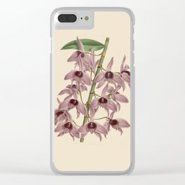 R. Warner & B.S. Williams - The Orchid Album - vol 01 - plate 042 Clear iPhone Case