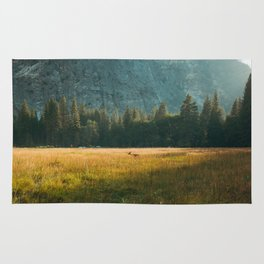 Meadow Sunset in Yosemite Rug