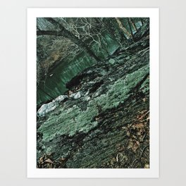 Forest Textures Art Print