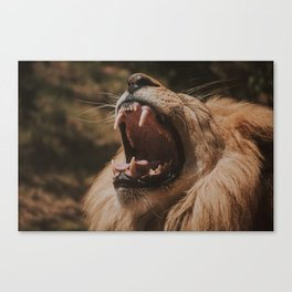 The King has Returned Canvas Print