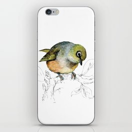 Sylvereye - Waxeye bird iPhone Skin