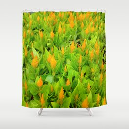 Field of Celosia Shower Curtain