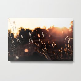 Picture Perfect Morning | Sunrise - Grand Canyon National Park, Arizona Metal Print