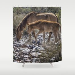 Salt River Mare and Her Colt, No. 2 Shower Curtain