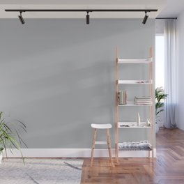 Stormy Grey - Light Neutral Mid Tone Gray Solid Color Wall Mural