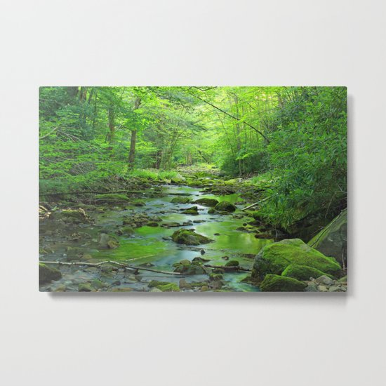 Rocky Forest Creek Metal Print