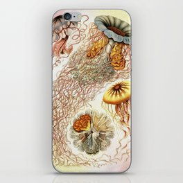 SEA CREATURES COLLAGE-Ernst Haeckel iPhone Skin