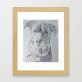 Roman the Dog Framed Art Print