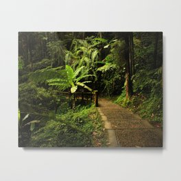 Tropical Forest Path Metal Print