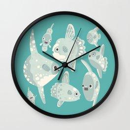 Mola mola Wall Clock