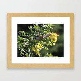 Bird in flight Framed Art Print