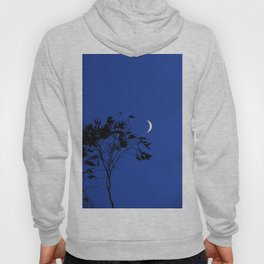 Smiling Moon Hoody