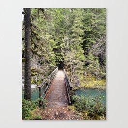 Brice Creek, trail, hiking, Oregon, bridge Canvas Print