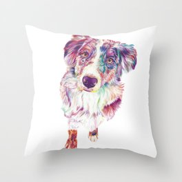 Multicolored Australian Shepherd red merle herding dog Throw Pillow