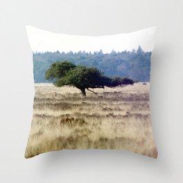 windtree II. Throw Pillow