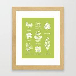 Trees & Shrubs // Green + White Framed Art Print