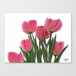 The Joy of Tulips Canvas Print