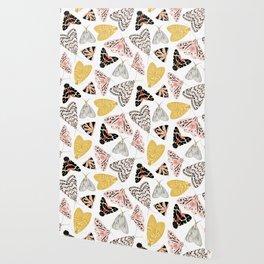 Moth's Diverse Beauty Pattern Wallpaper