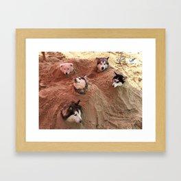 The doggy in beach Framed Art Print