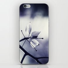 Spring Leaves in Black and White  iPhone & iPod Skin