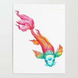 Rainbow Koi Fish Poster