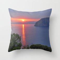 Pink summer Throw Pillow