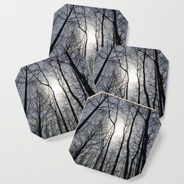 White Sky, Black Trees Coaster