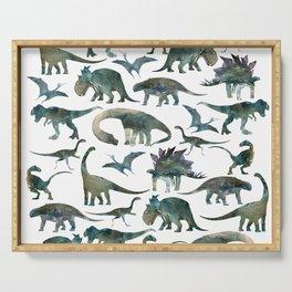 Dinosaur Pattern Serving Tray