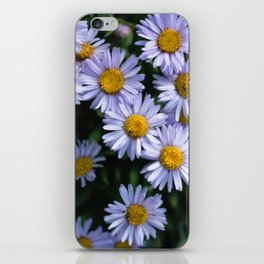 Plant Patterns - 𝘌𝘳𝘪𝘨𝘦𝘳𝘰𝘯 sp. iPhone Skin